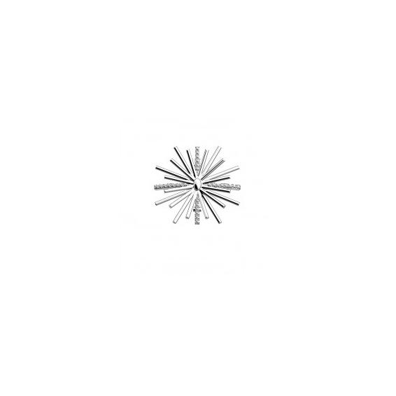 Clip Les Coutures Passiflore Oxyde de Zirconium Finition Argentée 25 mm