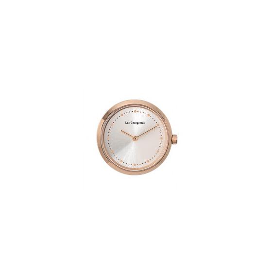 Boîtier de montre Grande Absolue, Finition Argentée